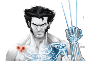 El personaje de Lobezno en Marvel, posee increíbles habilidades como: sentidos animales agudizados, factor curativo acelerado y garras retráctiles. Los cómics, retratan cómo se vio obligado a participar en un experimento de la CIA, que consistía en forrar su esqueleto y sus garras del indestructible adamantium, aprovechando que al poder regenerar cualquier tejido de su cuerpo, podía ser sometido a cualquier intervención e incluso ser inmune a toda enfermedad. Fuente: Daniel Mora (Imagen); Enciclopedia X-men (Texto)