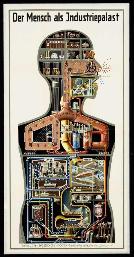 """""""Der Mensch als Industriepalast"""" (el hombre como un palacio industrial), Fritz Kahn (1926)."""